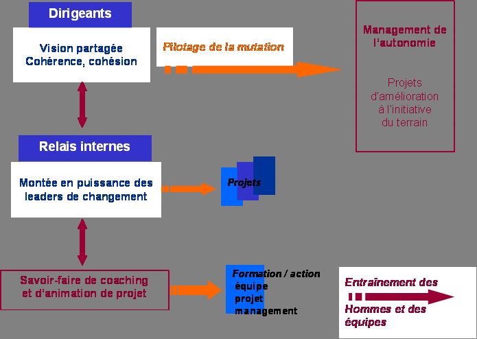 processus-mutation